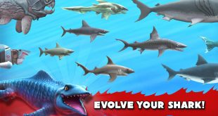 Hungry Shark Evolution4
